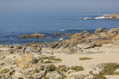 View of the atlantic ocean with sea and rocks with a person resting and a white dog. Leca da Palmeira/Porto/Portugal - 10 04 2018: View of the atlantic ocean stock image