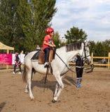 Lección de la equitación Imagen de archivo libre de regalías