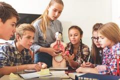 Lección informativa para los adolescentes atentos Imagenes de archivo
