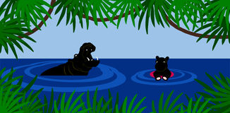 Lección de la natación del hipopótamo Imagen de archivo libre de regalías