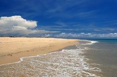 Lechada de cal en la playa del Caribe tropical imagen de archivo