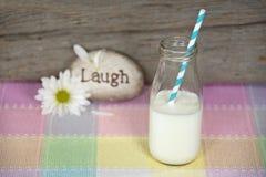 Leche blanca en botella de leche retra con la margarita Foto de archivo libre de regalías