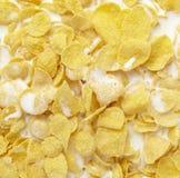 Leche del alimento del muesli de los cereales de las avenas fotografía de archivo libre de regalías
