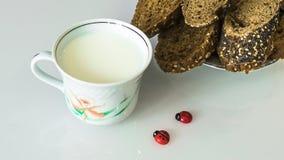 Leche en una taza en la tabla con el pan, secándose imagen de archivo libre de regalías