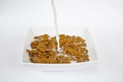 Leche que vierte en el tazón de fuente de cereal Fotografía de archivo