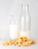 Leche y copos de maíz Fotografía de archivo libre de regalías
