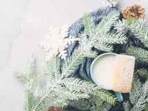 Leche y galletas por días de fiesta de la Navidad del invierno Visión superior Fotos de archivo libres de regalías