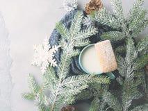 Leche y galletas por días de fiesta de la Navidad del invierno Visión superior Fotografía de archivo