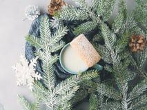Leche y galletas por días de fiesta de la Navidad del invierno Visión superior Imágenes de archivo libres de regalías