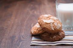 Leche y galletas sabrosas Imagen de archivo