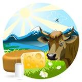 Leche y queso Imágenes de archivo libres de regalías