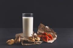 Lechería hecha en casa, leche del vegano, comida vegetariana Imagen de archivo libre de regalías