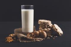 Lechería hecha en casa, leche del vegano, comida vegetariana Foto de archivo libre de regalías