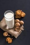 Lechería hecha en casa, leche del vegano, comida vegetariana Imagen de archivo