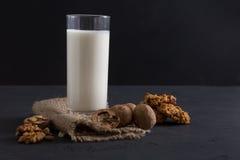Lechería hecha en casa, leche del vegano, comida vegetariana Foto de archivo