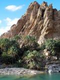 Lecho de un río seco en Omán Foto de archivo