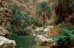 Lecho de un río seco Shab Fotografía de archivo libre de regalías