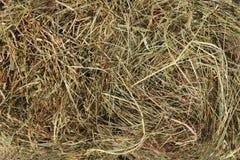Lecho del heno Hierba seca Arpillera natural fotos de archivo libres de regalías