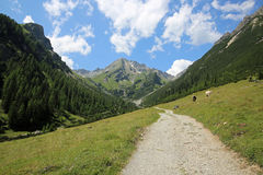 Lechtal Alps Stock Photos
