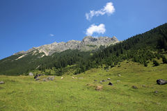 Lechtal Alps Stock Images