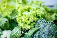 Lechuga, bróculi y ensalada verde Foto de archivo libre de regalías