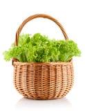 Lechuga de hojas verde en la cesta Imágenes de archivo libres de regalías