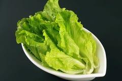 Lechuga de Romaine del ¼ de Vegetablesï Fotografía de archivo