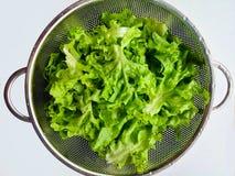 Lechuga para la verdura sana, verde Fotografía de archivo