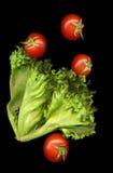 Lechuga verde de la rama con los tomates maduros rojos en fondo negro Foto de archivo