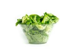 Lechuga verde fresca en bol de vidrio Fotografía de archivo libre de regalías