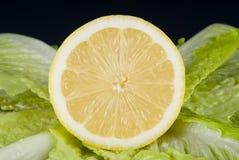 Lechuga y limón Imágenes de archivo libres de regalías