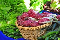 Lechuga y pepinos del mercado de los granjeros Fotos de archivo