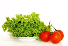 Lechuga y tomates Foto de archivo libre de regalías