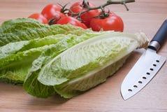 Lechuga y tomates de Romaine. Fotografía de archivo libre de regalías