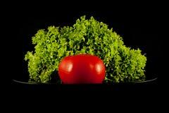 Lechuga y un tomate Fotografía de archivo libre de regalías