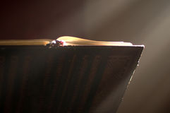 Lectern in altar with a holy bible. Royalty Free Stock Images