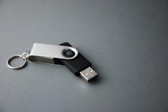 Lecteur d'instantané d'USB Images stock