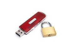 Lecteur d'instantané d'USB avec un blocage Photographie stock libre de droits