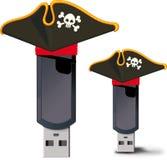 Lecteur d'instantané d'USB de pirate Images libres de droits