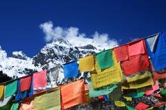 lection auf der Markierungsfahne im Mingyong Gletscher Stockbild