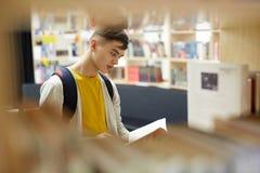 Lector adolescente Imagen de archivo libre de regalías