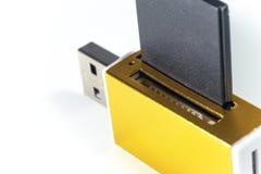 Lector de tarjetas del oro de la memoria en el fondo blanco imágenes de archivo libres de regalías