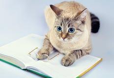Lector del gato Imágenes de archivo libres de regalías