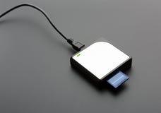 Lector para las tarjetas de memoria SD estándar Imágenes de archivo libres de regalías