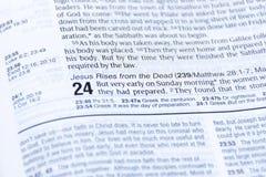 Lectura de la biblia de Pascua de las buenas noticias de la resurrección de Jesus Christ de los muertos Capítulo 24 de Lucas fotografía de archivo libre de regalías