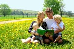 Lectura de la familia en el campo de dientes de león Foto de archivo libre de regalías