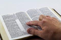 Lectura de una biblia en el fondo blanco Imagen de archivo