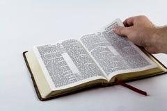 Lectura de una biblia en el fondo blanco Foto de archivo libre de regalías