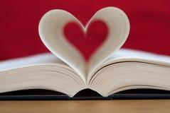Lectura del amor Foto de archivo libre de regalías