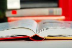 Lectura del libro Imagen de archivo libre de regalías